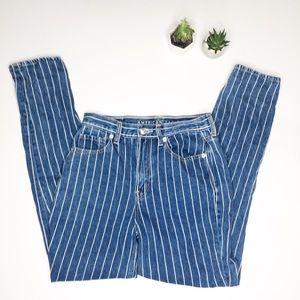 American Eagle 2 Striped Skinny Mom Jeans